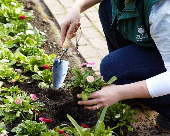 Shovelandhoe Com Garden Hand Tools Accessories
